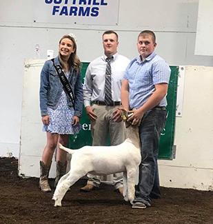 Fledderjohann Show Goats | Winners